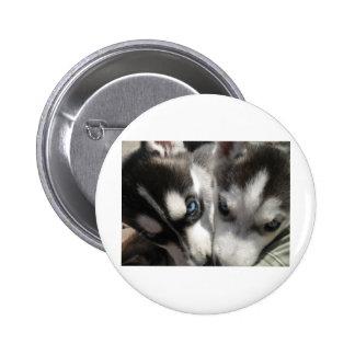 Siberian Husky Puppy mug Pinback Buttons