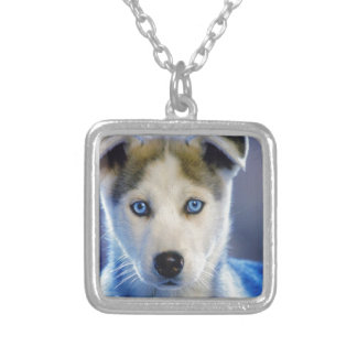 Siberian Husky Puppy Square Pendant Necklace