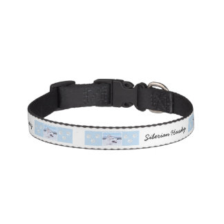 Siberian Husky (Silver and White) Pet Collar