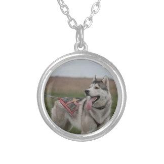 Siberian Husky sled dog Round Pendant Necklace