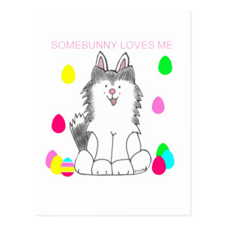 Siberian Husky Somebunny Loves Me Postcard