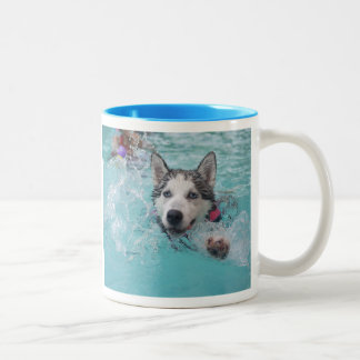 Siberian Husky Swimming in Pool Two-Tone Coffee Mug