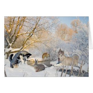 Siberian Husky Winter Fun With Friends Cards