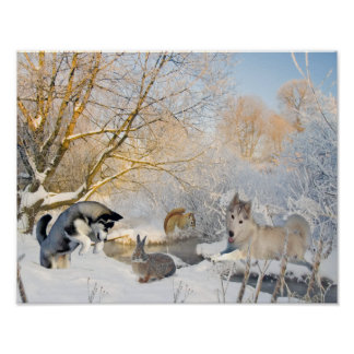 Siberian Husky Winter Fun With Friends Poster
