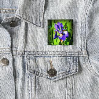 Siberian Iris Square Button