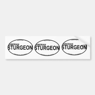 Siberian Sturgeon Euro Stickers Bumper Sticker