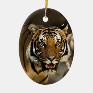 Siberian Tiger Ceramic Oval Ornament