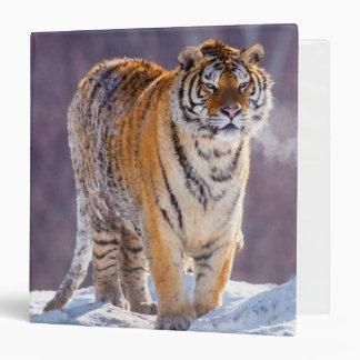 Siberian tiger in snow, China Binders