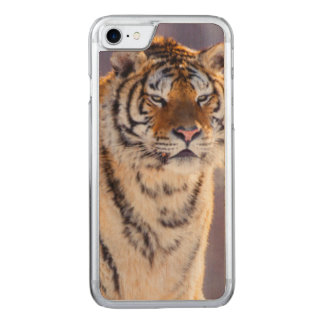Siberian tiger in snow, China Carved iPhone 7 Case