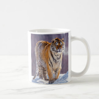 Siberian tiger in snow, China Coffee Mug