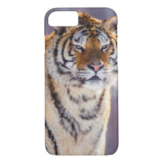 Siberian tiger in snow, China iPhone 7 Case