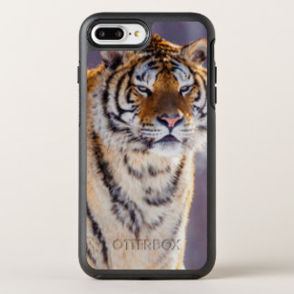 Siberian tiger in snow, China OtterBox Symmetry iPhone 8 Plus/7 Plus Case