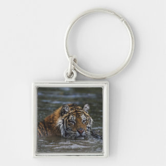 Siberian Tiger In Water Silver-Colored Square Keychain