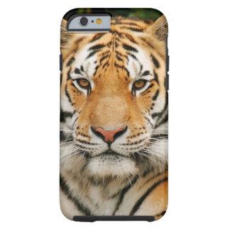 Siberian Tiger iPhone 6 case Tough iPhone 6 Case
