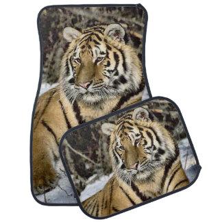 Siberian Tiger Lovers Art Car Mat