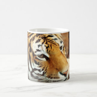 Siberian Tiger Morphing Coffee Mug