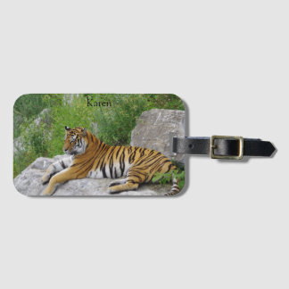 Siberian Tiger Relaxing on a Rock Luggage Tag