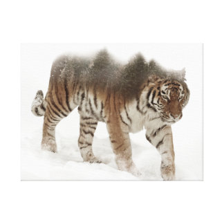 Siberian tiger-Tiger-double exposure-wildlife Canvas Print
