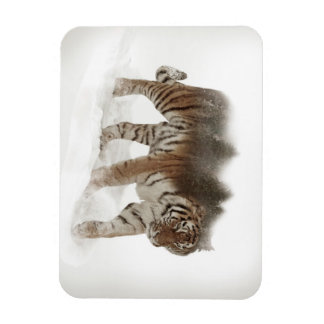 Siberian tiger-Tiger-double exposure-wildlife Magnet