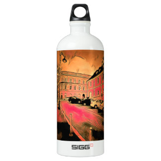 Sibiu painting water bottle