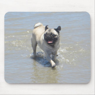 Sid the Pug at Dog Beach, San Diego, CA Mouse Pad