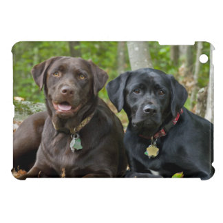 Side By Side Labrador Retriever Dogs Outside iPad Mini Cases