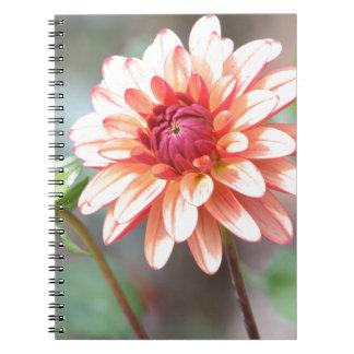 Side by Side Notebook
