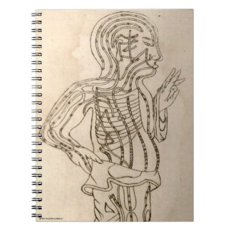 Side-facing Figure Notebooks