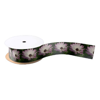 Side View of A Pink and White Osteospermum Satin Ribbon