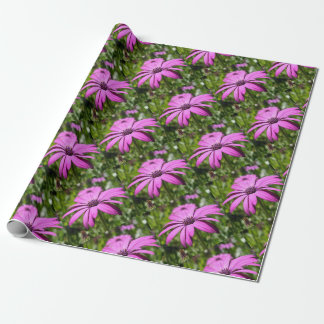 Side View Of A Purple Osteospermum With Garden Bac Wrapping Paper