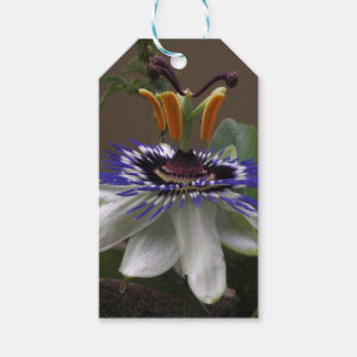 Side View of Beautiful Passiflora Flower Pack Of Gift Tags