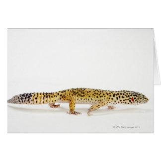 Side view of leopard gecko lizard card