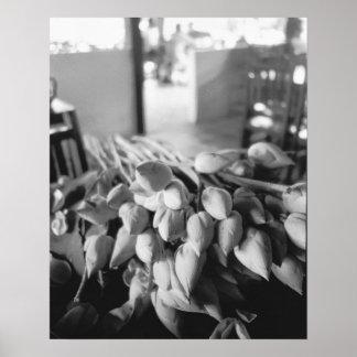 Siem Reap Cambodia, Lotus Flowers Poster