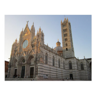 Siena Duomo Postcard
