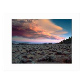 """Sierra Crescendo"" Postcard"