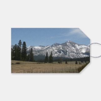 Sierra Nevada Mountains I from Yosemite Gift Tags