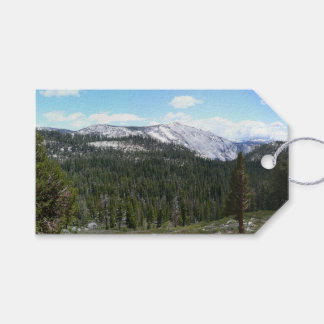 Sierra Nevada Mountains II from Yosemite Pack Of Gift Tags