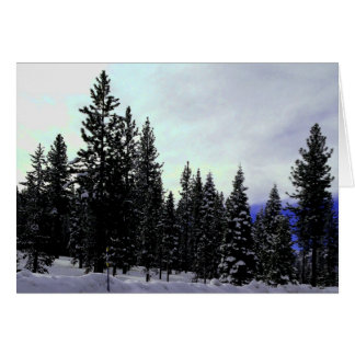 Sierra Nevada Winter Card