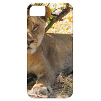 Siesta Time iPhone 5 Case