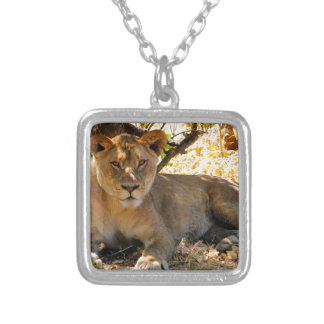 Siesta Time Silver Plated Necklace