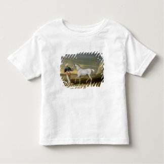 Signal, a grey Arab, with a Groom in the Desert (o T-shirt