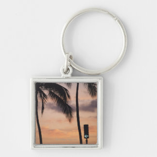 Signal and Palm Tree Keychains