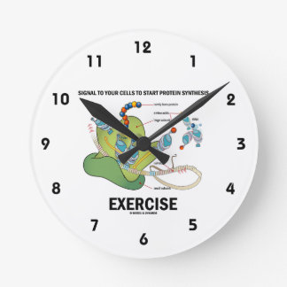 Signal Cells To Start Protein Synthesis Exercise Wallclock