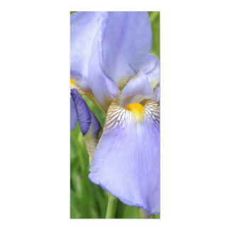 Signet de l'iris III Carton D'invitation 10,16 Cm X 23,49 Cm