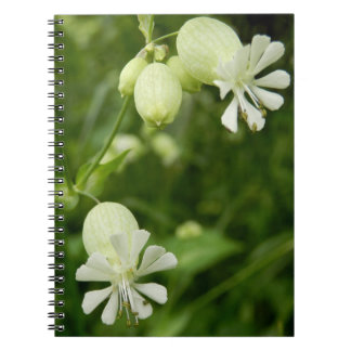 Silene Vulgaris Spiral Photo Notebook