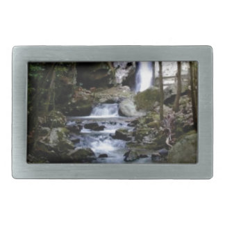 silent stream in forest belt buckles