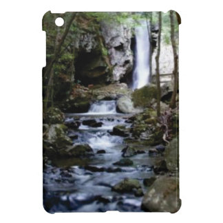 silent stream in forest iPad mini case