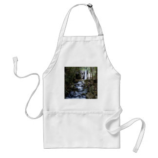 silent stream in forest standard apron
