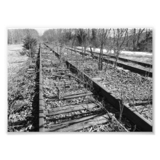 Silent Tracks 7x5 Black and White Photographic Pri Photo Print
