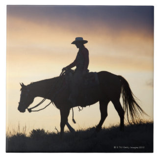 Silhouette of a Cowgirl on her horse against the Tile